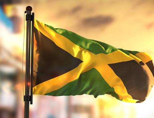 Entspannt über 'Jamaika'- Koalitionsverhandlung spekulieren