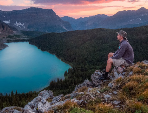 Forschung: Führt Achtsamkeit zu Nachhaltigkeit?